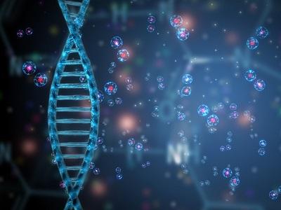 RNAi Technology   Biocompare