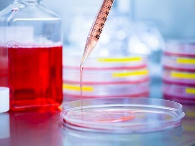 Cell Culture Media Biocompare Com