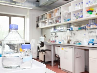 Laboratory Ovens | Biocompare com