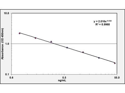 Serotonin ELISA Kit (OKEH02558)