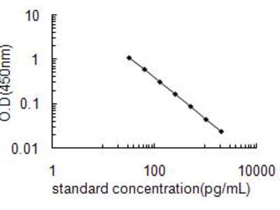 Arginine vasopressin ELISA Kit (OKEH02585)