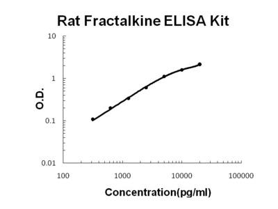 Fractalkine ELISA Kit (Rat) (OKBB00631)
