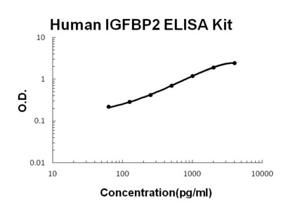 IGFBP2 ELISA Kit (Human) (OKBB00397)