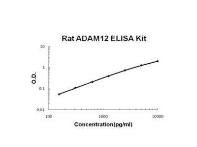 ADAM12 ELISA Kit (Rat) (OKBB00585)