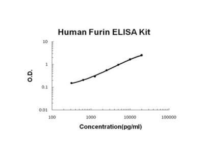 Furin ELISA Kit (Human) (OKBB00459)
