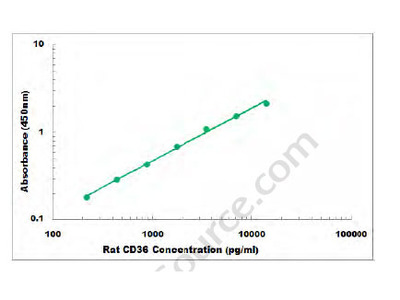 Rat CD36 ELISA Kit