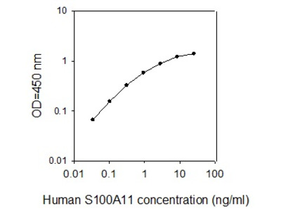 Review of S100A11 ELISA Kit