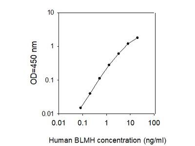 Human BLMH ELISA