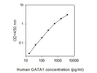 Human GATA-1/Eryf1 ELISA