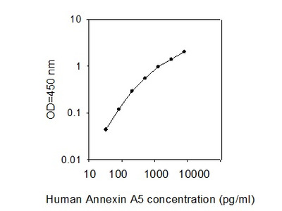 Human Annexin A5/Annexin V ELISA