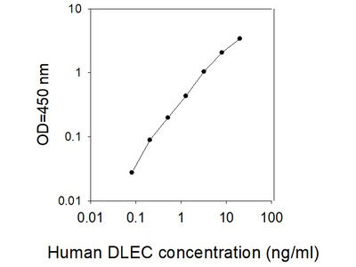 Human DLEC/CLEC4C/BDCA-2 ELISA