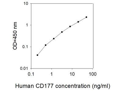 Human CD177 ELISA