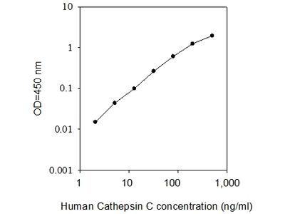 Human Cathepsin C ELISA