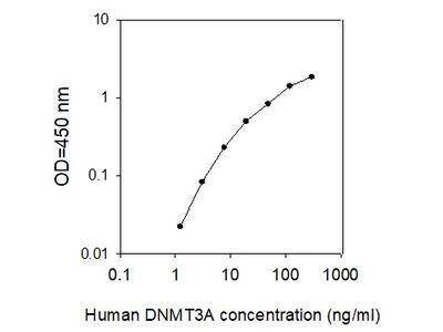 Human DNMT3A ELISA