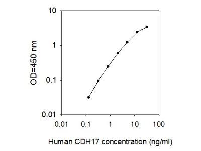 Human Cadherin-17 ELISA