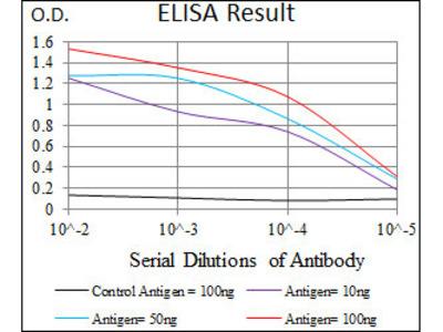 anti-Purinergic Receptor P2Y, G-Protein Coupled, 13 (P2RY13) (AA 1-49) antibody