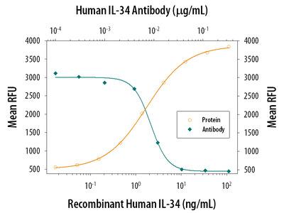 IL-34 Antibody
