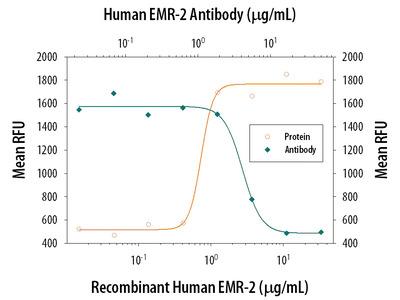 EMR2 Antibody