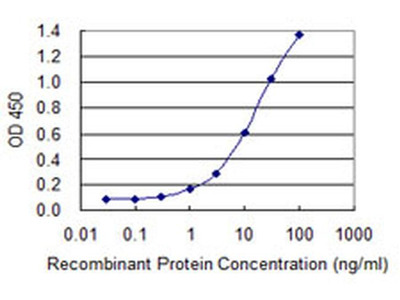 hCG beta-7 Monoclonal Antibody (6F12)