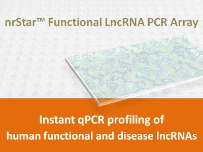 nrStar™ Human Functional LncRNA PCR Array