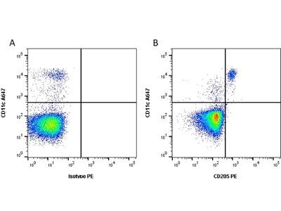 MOUSE ANTI HUMAN CD205:Low Endotoxin