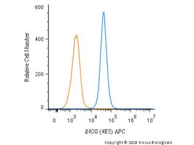 iNOS Antibody (4E5) [Allophycocyanin]