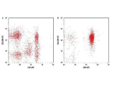 Human Naive CD4+ T Cell Isolation Kit