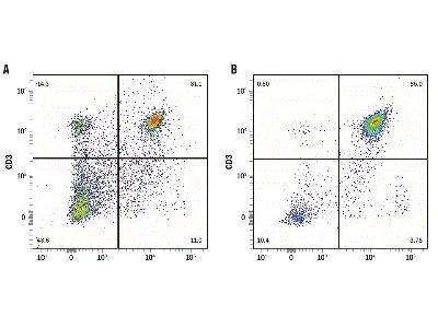 Rat CD4+ T Cell Isolation Kit
