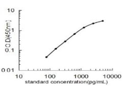 NMT1 ELISA Kit (Bovine) (OKEH03908)
