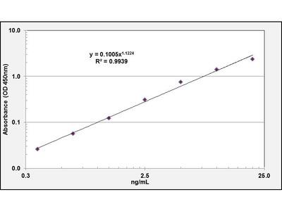 ABCC1 ELISA Kit (Rat) (OKEH03279)
