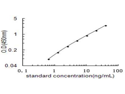 SLC1A3 ELISA Kit (Rat) (OKEH03444)