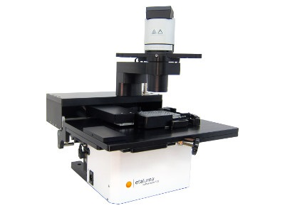 Affordable Fluorescent Microscope, A Workhorse In Our Lab