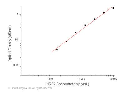 Human Neuropilin-2 / NRP2 ELISA Pair Set