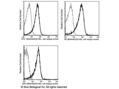Semaphorin 4D / SEMA4D / CD100 Antibody (APC), Rabbit MAb