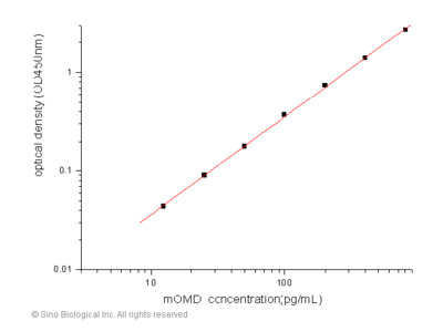 Mouse Osteomodulin / OMD ELISA Pair Set