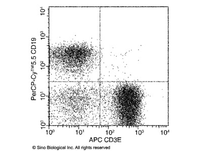 CD3 epsilon / CD3e Antibody (APC), Mouse MAb