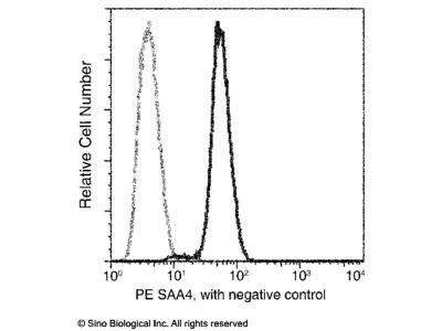 SAA4 Antibody (PE), Mouse MAb