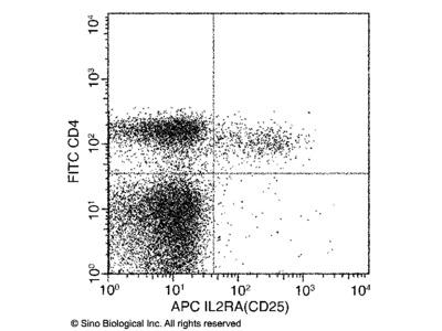 CD25 / IL2RA Antibody (APC), Rabbit MAb