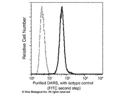 DARS Antibody, Mouse MAb