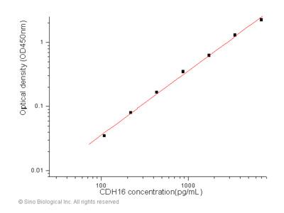 Human KSP-Cadherin / Cadherin-16 / CDH16 ELISA Pair Set