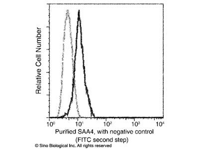 SAA4 Antibody, Mouse MAb