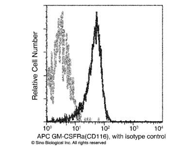 CD116 / GM-CSFR Antibody (APC), Rabbit MAb