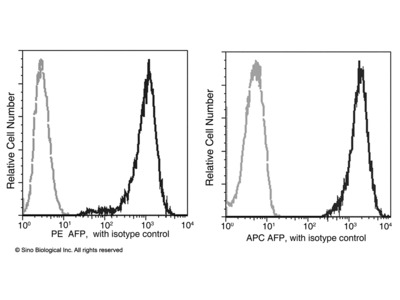 AFP / alpha-fetoprotein Antibody (PE), Mouse MAb