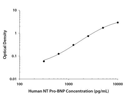 Human NT Pro-BNP DuoSet ELISA