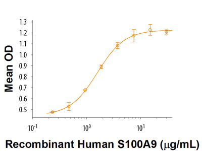 S100A9 Protein
