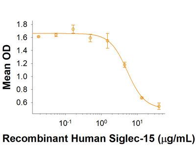 Siglec-15 Fc Chimera Protein
