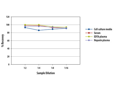 NT-Pro Atrial Natriuretic Peptide /ANP ELISA