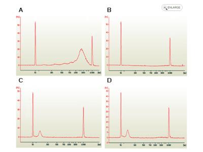 EpiQuik Circulating Cell-Free DNA Isolation Kit