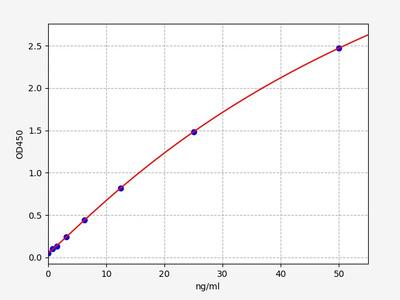 Human ATOH1(Protein atonal homolog 1) ELISA Kit