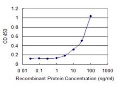 Mouse Anti-PROM1 Antibody